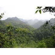 Национальный парк Cat Ba фото