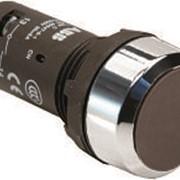 Кнопка CP1-30B-11 черная без фиксации 1НО+1HЗ фото