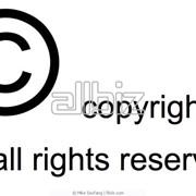 Авторское право фото