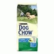 Корм Dog Chow Puppy Large Breed, Дог Чау для щенков крупных пород с индейкой 14 кг фото
