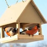 Автокормушка для птиц фото