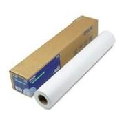 Бумага epson Premium Glossy Photo Paper PGPP 16x30.5m (250) фото