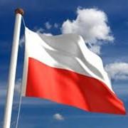 Консультации по образованию и обучению в Польше фото