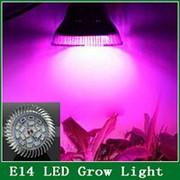 Фитолампы светодиодные е14 фото