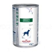 Лечебная консерва для собак Royal Canin Obesity 0,42 кг фото