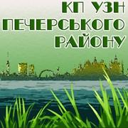 Комплексний благоустрій та озеленення територій. Київ, Печерськ фото