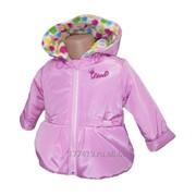 Куртка для девочек «Дива» (Весна-Осень) фото