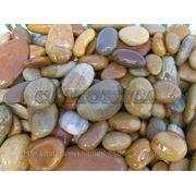 Галька речная жёлто-коричневая фр. 10-20,20-40 мм фото