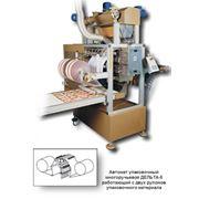 Автомат упаковочный многоручьевой ДЕЛЬТА-5 работающий с двух рулонов упаковочного материала фото