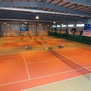 Обучение игры в большой теннис фото