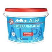 Краска для стен и потолков Суперальпакрил (Superalpacryl) 2л фото
