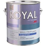 Интерьерная матовая краска Royal Eggshell 0,946л ACE фото