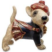 Статуэтка Собака О-Доннелл 29,5х31х21,5см. арт.NS-180 фото