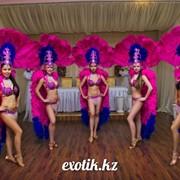 Шоу-балет EXOTIC / Экзотик фото