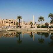 VIP - Туры Египет фото