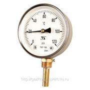 Термометры биметаллические радиальные фото