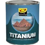 Защитное покрытие Титаниум (для камня,дерева,металла) 15л фото