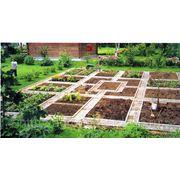Уход за садом - вызов агронома фото