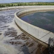 Очистка сточных вод мясной и рыбной промышленности фото