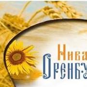 Мука пшеничная хлебопекарная Переволоцкий элеватор фото