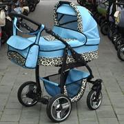 Коляска детская модульная 2/3 в 1 Bogus Dino Leo Blue фото