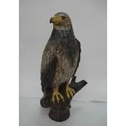 Скульптура Орел фото
