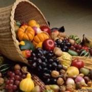Сертификация овощей и фруктов фото