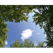 Панорамное фото неба фото