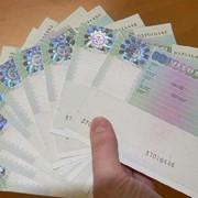 Венгерская рабочая бизнес мульти виза (Шенген) фото