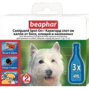 Капли СПОТ ОН для собак средних пород 3 шт Beaphar Caniguard фото