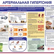 Плакат Профилактика гипертонии К.11 фото