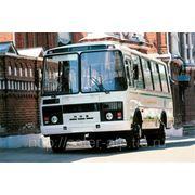 Аренда автобуса ПАЗ фото