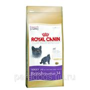 Корм Royal Canin Д/Кошек Британская Короткошерстная 2кг. фото