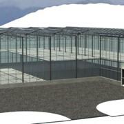 Проектирование промышленных тепличных комплексов фото