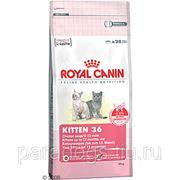 Корм Royal Canin Д/Кошек Киттен 4кг. фото