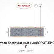 Матрац беспружинный Фаворит-Био П 200х90 фото