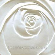 3D стеновые декоративные панели из полиуретана Artpole фото