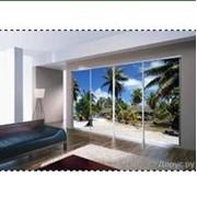Шкаф-купе с пальмами фото