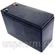 Свинцовая аккумуляторная батарея (12 В - 7,0 А/ч) фото