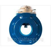 Ирригационный водосчетчик WI-N ДУ 65 фото
