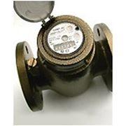 Счетчик воды универсальный СВМТ-50 (фл., раб. т. +5 до +90C, давл. до 10бар) Бетар фото
