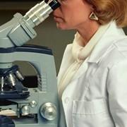 Лаборатория биохимическая фото