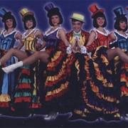 Одежда и костюмы для шоу-программ фото