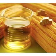 Масло кукурузное рафинированное фото