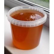 Мед из разнотравья фото