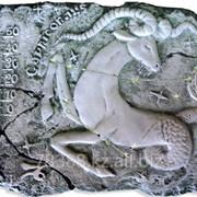 Термометр сувенирный Знаки зодиака, Козерог ТУ У 33.2-14307481.027-2002 фото