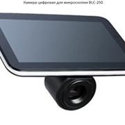 Камера цифровая для микроскопии BLC-250 фото
