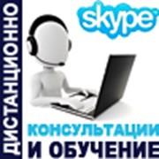 Обучение руководителей по Skype фото