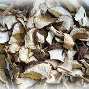 Белые карпатские сушенные грибы фото