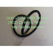 Кольцо уплотнительное 304-168-7-3 фото